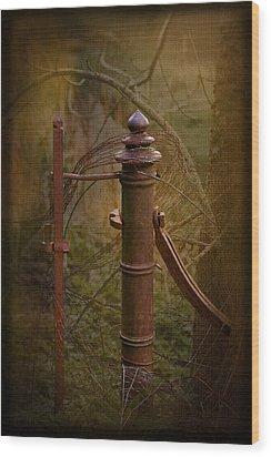 Wood Print featuring the photograph Gate Post by Liz  Alderdice