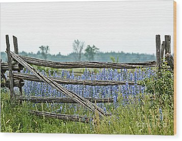 Gate To Blue Wood Print by Cheryl Baxter