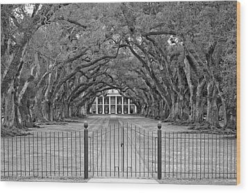 Gateway To The Old South Monochrome Wood Print by Steve Harrington