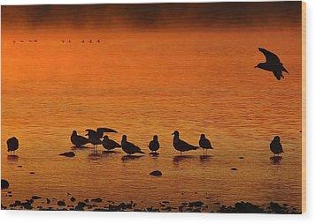 Gathering At Sunrise Wood Print