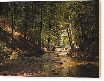 Wood Print featuring the photograph Gathering At The Stream by Haren Images- Kriss Haren