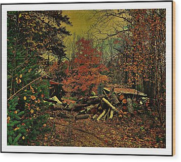 Gathering Wood For Winter  Wood Print by Dianne  Lacourciere
