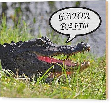 Gator Bait Greeting Card Wood Print by Al Powell Photography USA