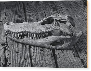Gator Black And White Wood Print by Garry Gay