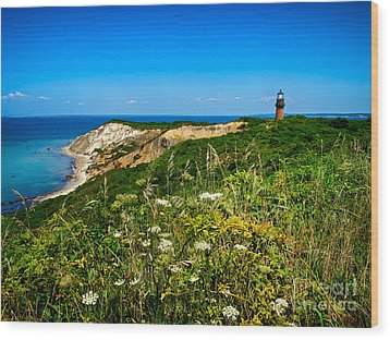 Gay Head Light And Cliffs Wood Print