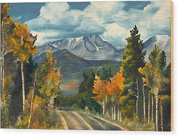 Gayle's Highway Wood Print by Mary Ellen Anderson