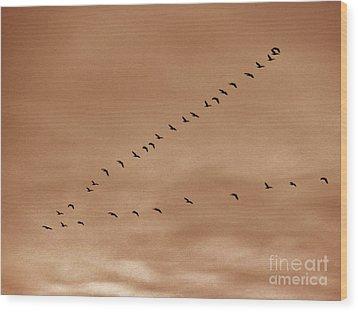 Geese 2 Wood Print by Judy Via-Wolff
