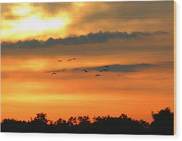 Geese Into The Sunset Wood Print