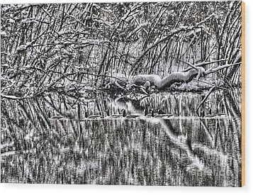 Geese On Pond Black And Wihite Wood Print by Dan Friend