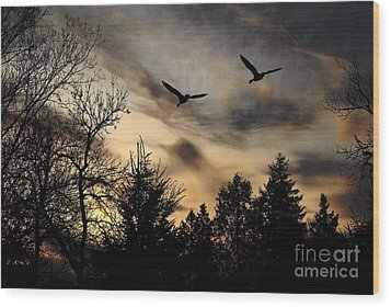 Wood Print featuring the photograph Geese Silhouette by Marjorie Imbeau