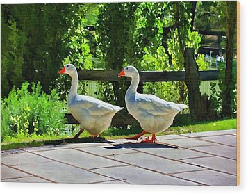 Wood Print featuring the photograph Geese Strolling In The Garden by Tracie Kaska