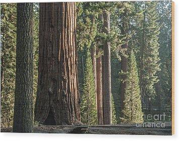 General Grant Circle - 7725 Wood Print