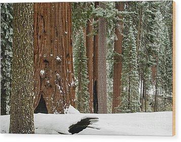 General Grant Circle In Snow  1-7932 Wood Print
