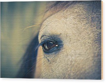 Gentle Eye Wood Print