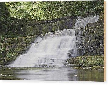 Gentle Falls Wood Print by Tony Reddington