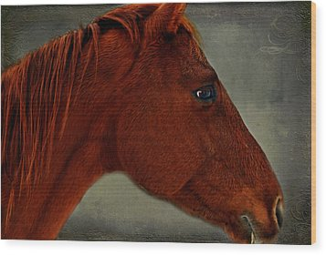 Wood Print featuring the photograph Gentle Red by Linda Segerson