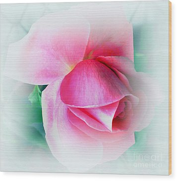 Gentleness And Grace Wood Print by Judy Palkimas