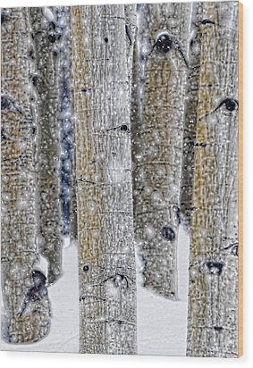 Gently Falling Forest Snow Wood Print by Don Schwartz