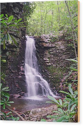 Gentry Creek- Upper Falls Wood Print by Annlynn Ward