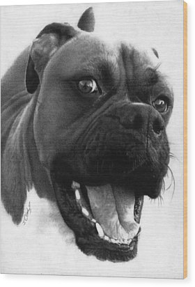 George - Boxer Dog Wood Print by Justin Clark