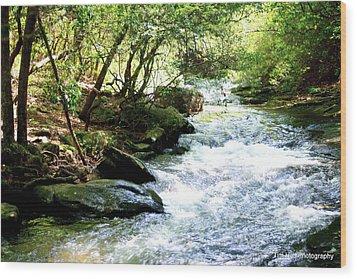 Georgia Water Wood Print by Tim Hall