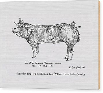 German Pietrain Boar Wood Print by Larry Campbell