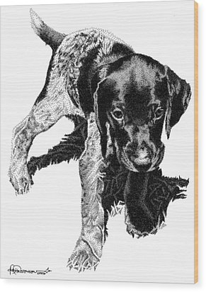 German Shorthair Wood Print by Rob Christensen