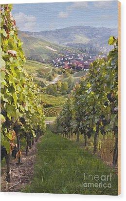 German Vineyard Wood Print by Sharon Foster