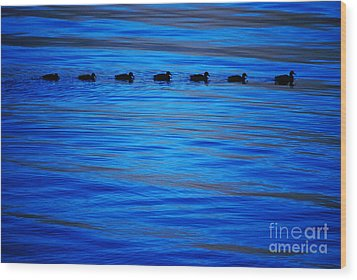 Wood Print featuring the photograph Getting Your Ducks In A Row by Cynthia Lagoudakis