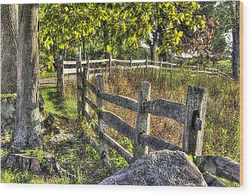 Wood Print featuring the photograph Gettysburg At Rest - Late Summer Along The J. Weikert Farm Lane by Michael Mazaika