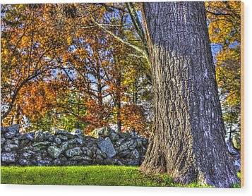 Wood Print featuring the photograph Gettysburg At Rest - Stone Fence Near Old Cyclorama Visitors Center by Michael Mazaika