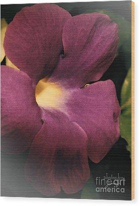 Ghana Violet Wood Print