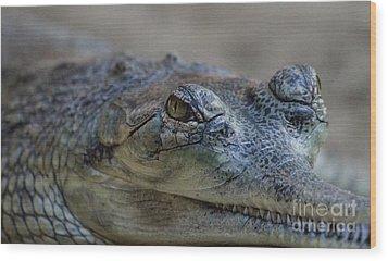 Gharial Smile Wood Print by Ruth Jolly
