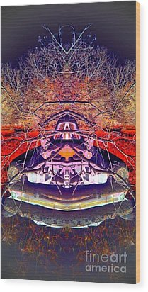 Wood Print featuring the photograph Ghost Car by Karen Newell