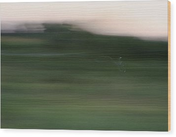 Wood Print featuring the photograph Ghost Flight - Motion Art Print by Jane Eleanor Nicholas