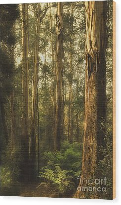 Ghostly Wood Print by Andrew Paranavitana