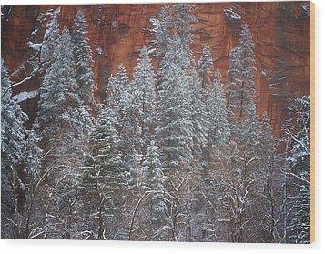 Ghosts Of Winter Wood Print by Peter Coskun