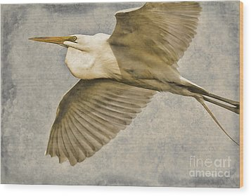 Giant Beauty In Flight Wood Print by Deborah Benoit