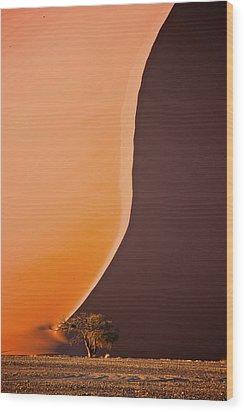 Giant Dunes Of Sossuvlei In Namibia Wood Print