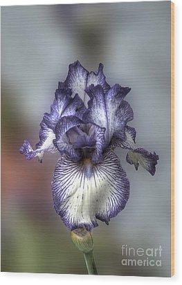 Giant Purple Iris Wood Print by Deborah Smolinske
