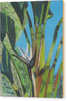 Giant White Bird Of Paradise Wood Print
