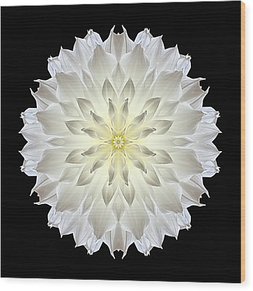 Giant White Dahlia Flower Mandala Wood Print