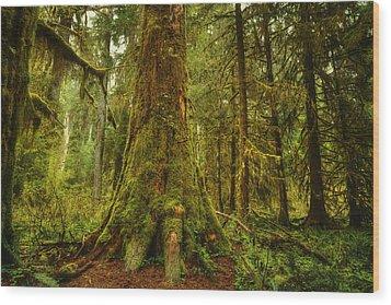 Giants Foot Wood Print