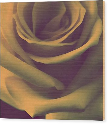 Gift Of Gold Wood Print by The Art Of Marilyn Ridoutt-Greene