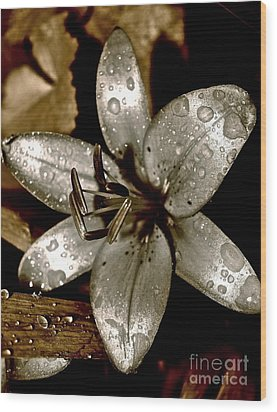 Gilded  Lilies 2 Wood Print by Linda Bianic