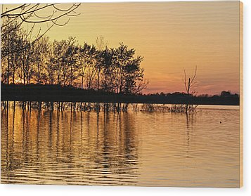 Gilded Sunset Wood Print
