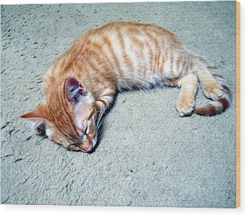 Ginger Sleeps Wood Print