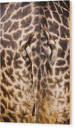 Giraffe Butt Wood Print by Adam Romanowicz