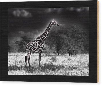 Giraffe Wood Print by Christine Sponchia