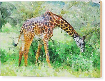 Giraffe Eating Grass Painting Wood Print by George Fedin and Magomed Magomedagaev